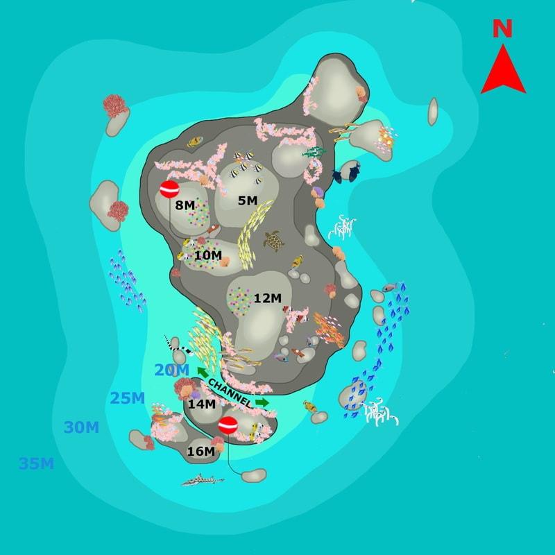 Карта рифа