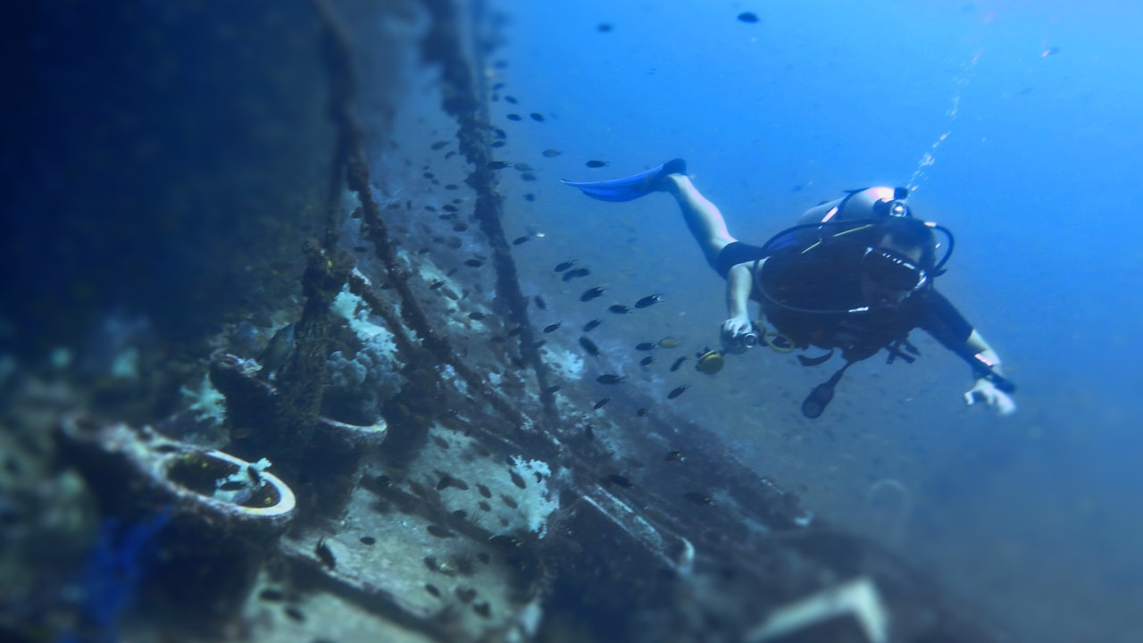 King Cruiser – Shark point – Koh Dok Mai